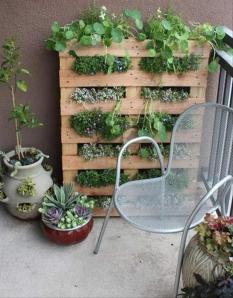 Garden made for a small balcony out of a pallet.