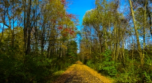 New England Bike Path