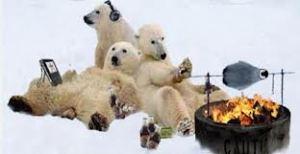 polar bears griling