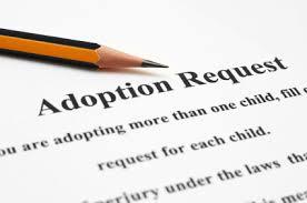 Adoption 2