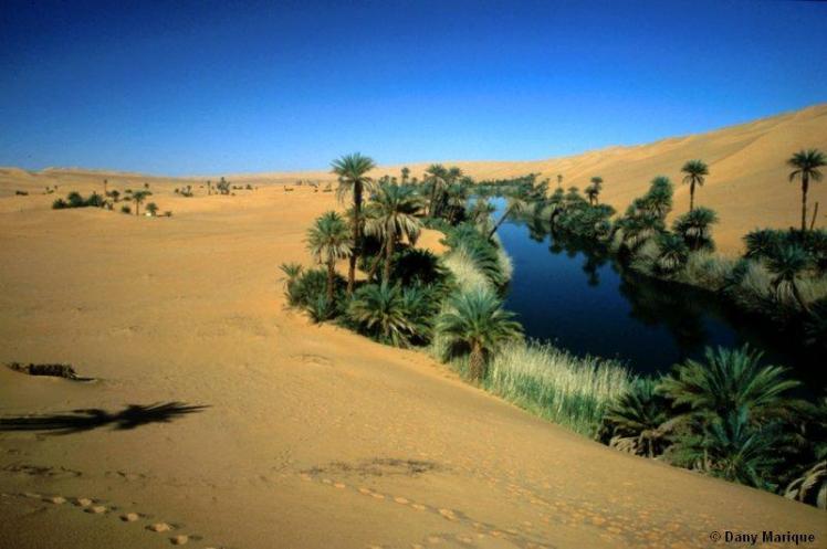Libya, oasis