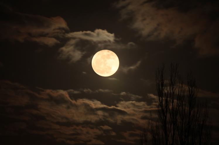 Moon Rise 3