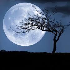Moon Rise 4