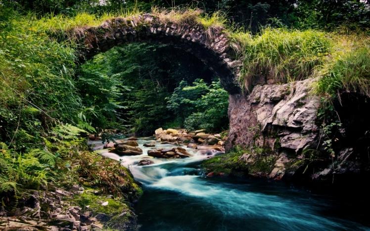 Mountain Stream 5